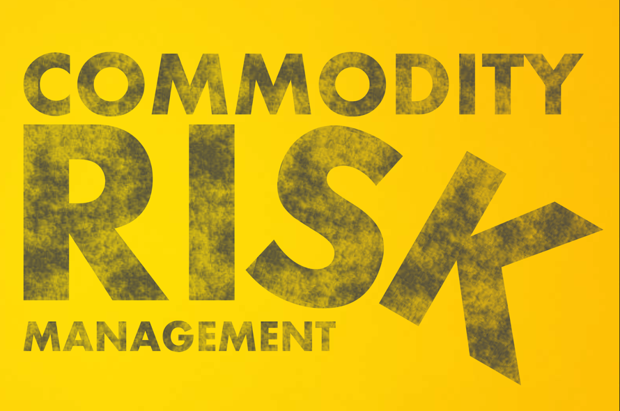 Commodity Risk Management – Methods in the Madness